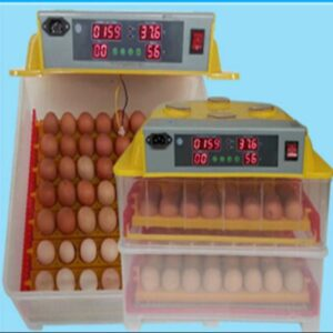 112 Pieces Mini Incubator