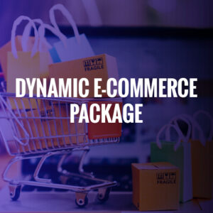 DYNAMIC E-COMMERCE PACKAGE